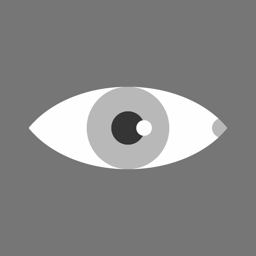 anatomia occhio frontale